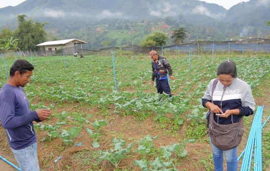 Klimasmart jordbruk på misjonsmarken
